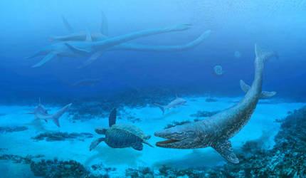 Late Cretaceous sea