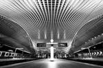 Symmetry - Liege-Guillemins IV