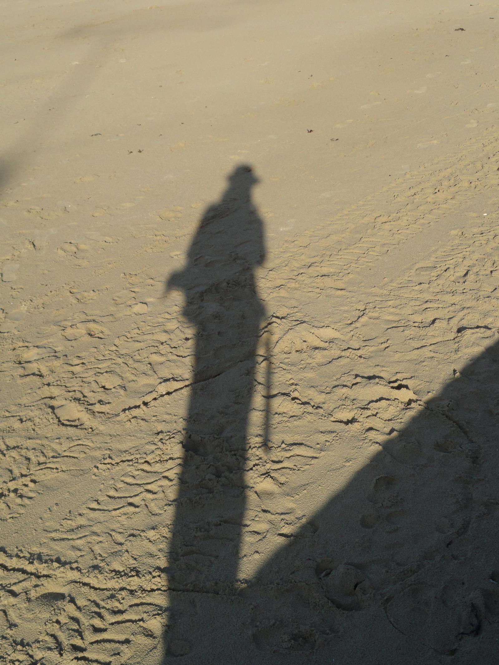 LatchDrom's Profile Picture