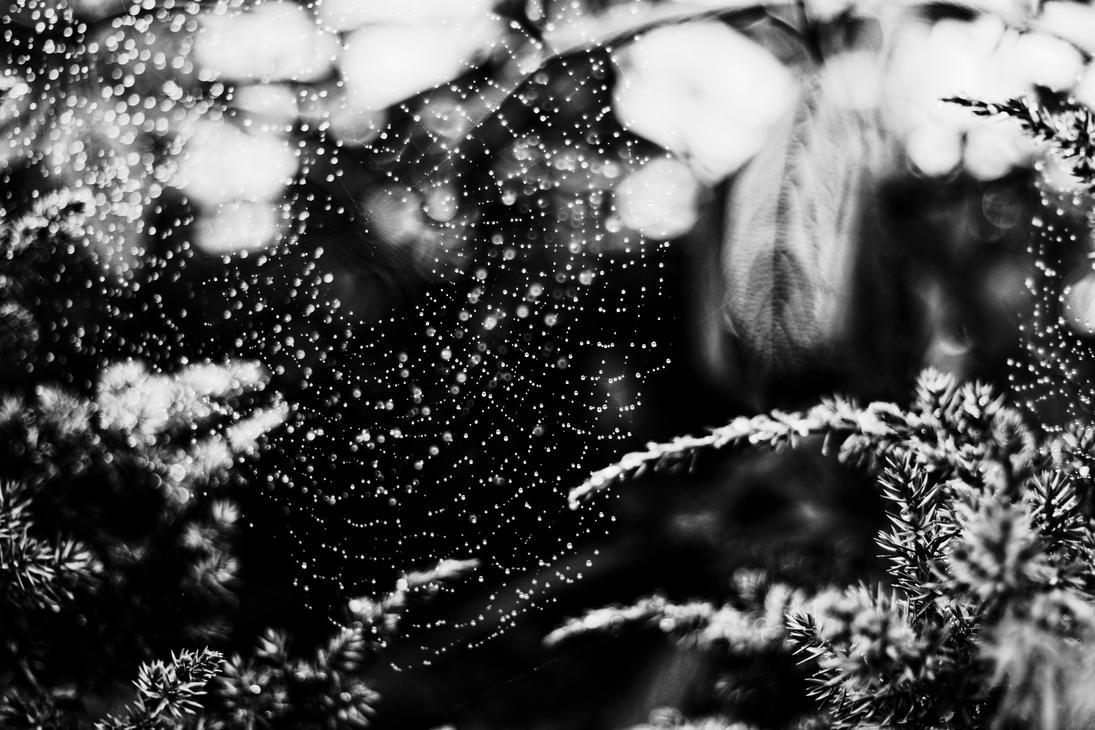 Jour de pluie by LatchDrom