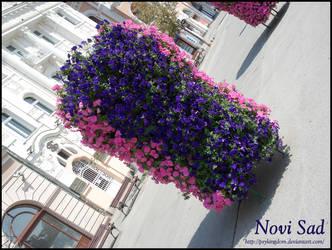 Novi Sad by PsyKingdom