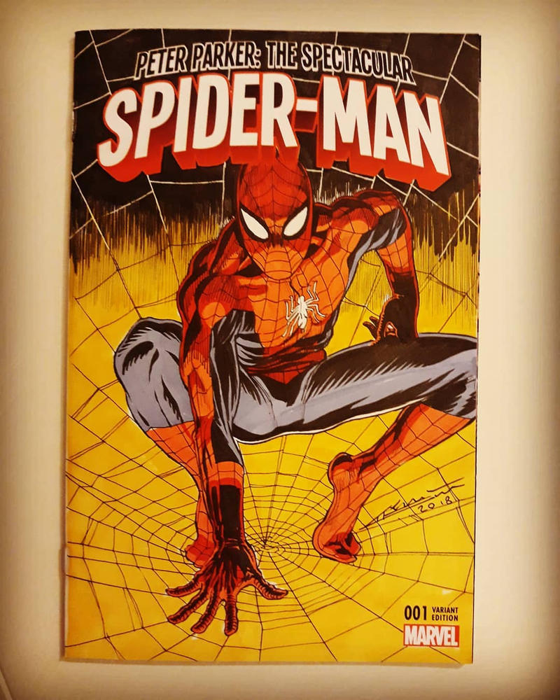 Spider-Man Blank Cover Art by draldede