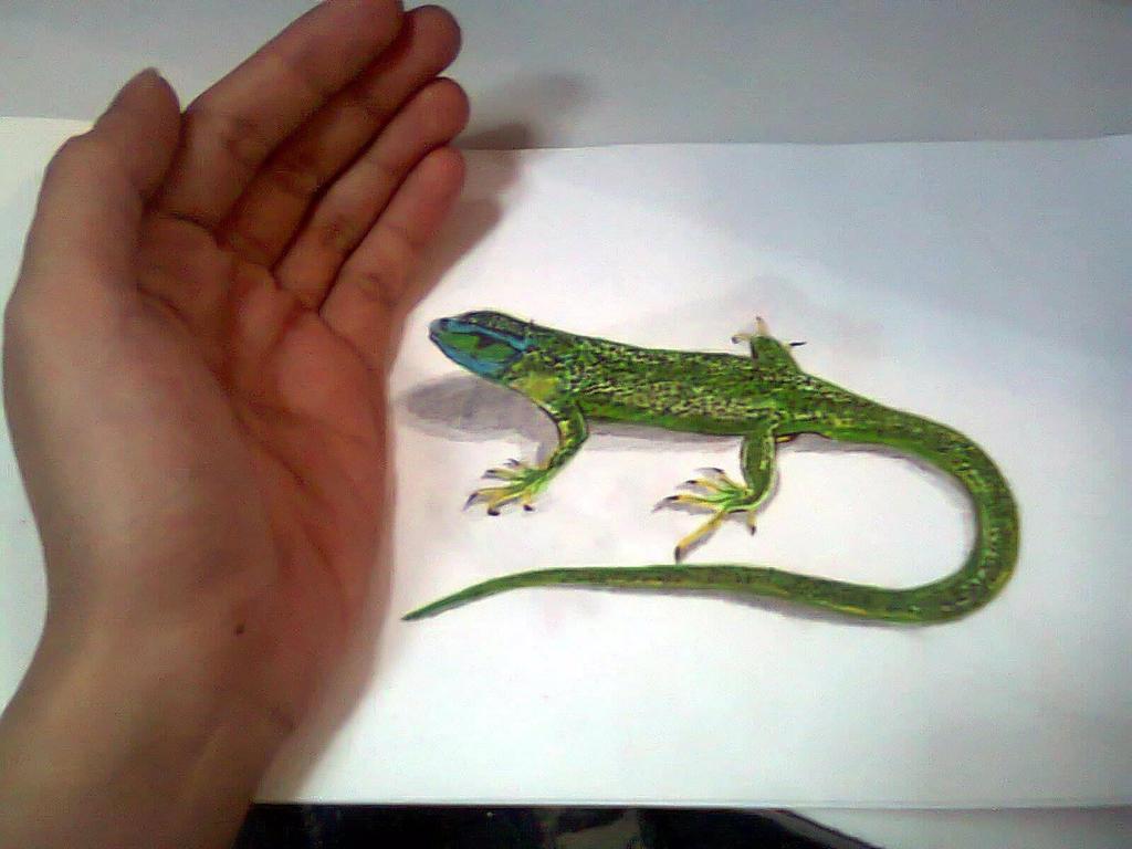 lizard by HalimawNgaEh
