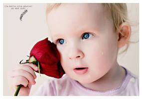 Tear Drops on Roses by Aeburse