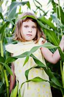 harvest by Aeburse