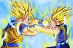 Goku and Majin Vegeta