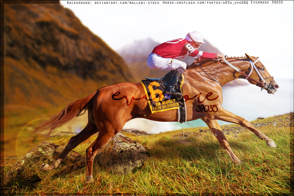 Thoroughbred Premade by Ever-more-Ever-yours