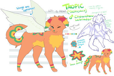 tropic reference sheet 2020