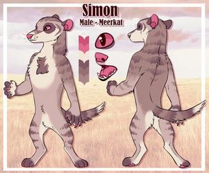 Simon by springf0x