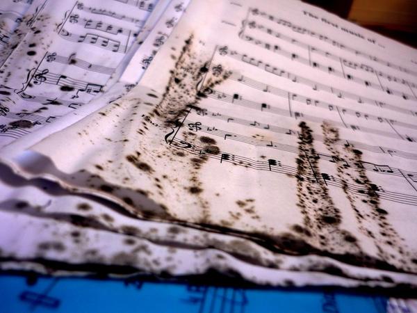 Musica Morta by Lyrastevens