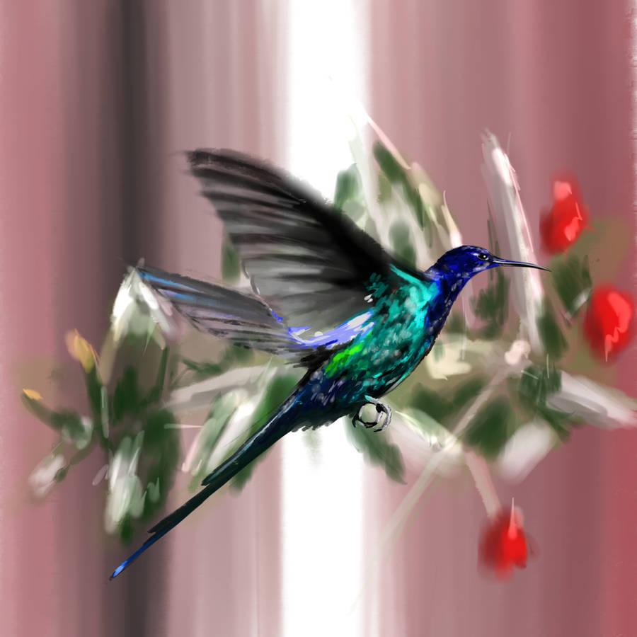 Beija Flor by thiagol