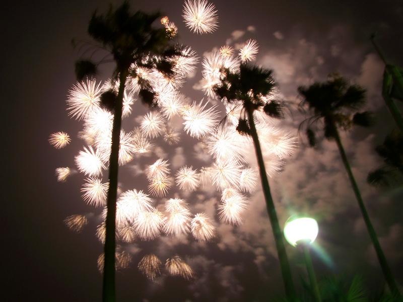 Fireworks Finale by zzDarkChizz