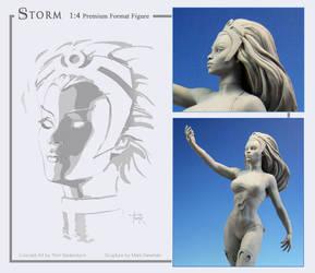 Storm Design and Sculpt - portrait