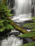 Water Stock - Hopetoun Falls