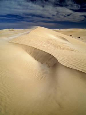 Dunes Stock - Penong, Sth Australia by cbidgie