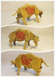 Water buffalo by Tan-HaoJie