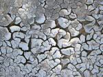Nasty Cracks