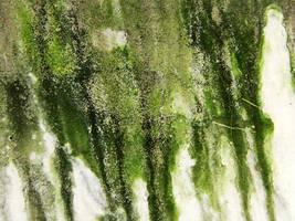 Mold Streaks by Neriah-stock