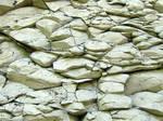 Some Dry White Rocks