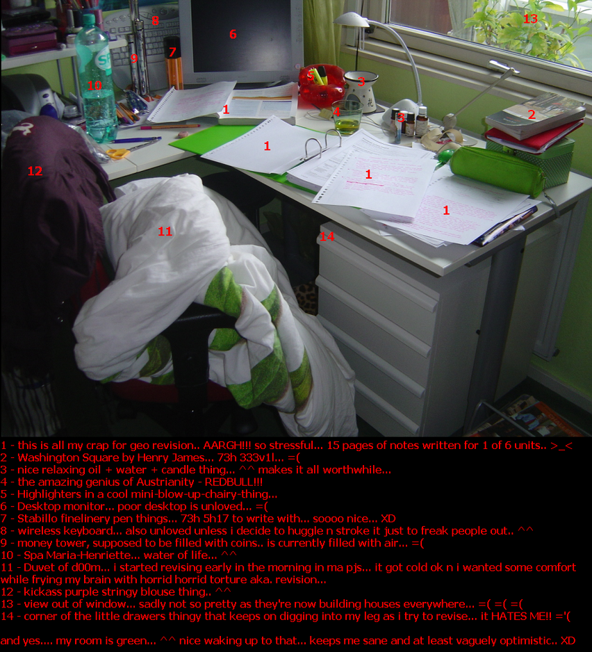 revision desktop XD by dozibee