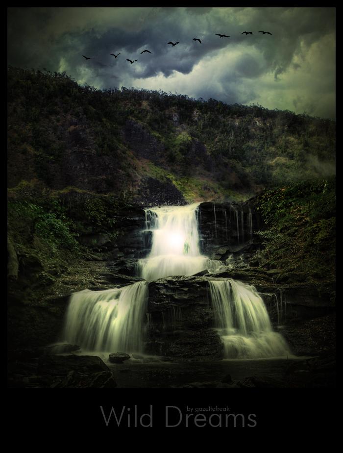 Wild Dreams by gazettefreak