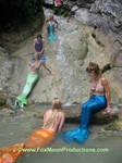 Mermaids Gather.