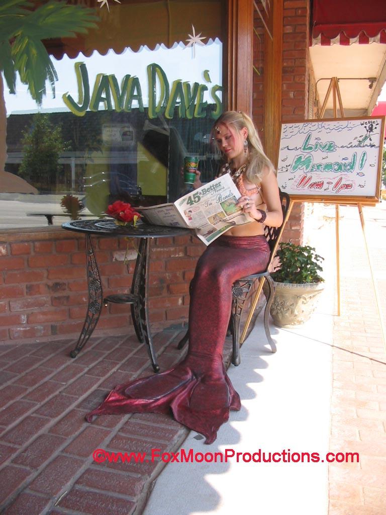 Garnette Mermaid at Java Daves by FoxmoonMerfolk