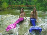 Mermaids in the Waters.