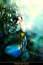 pisces by hich