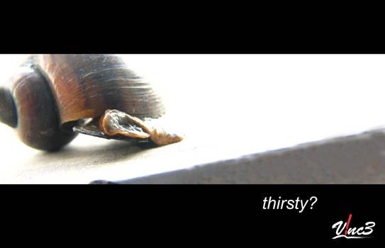 thirsty? 2