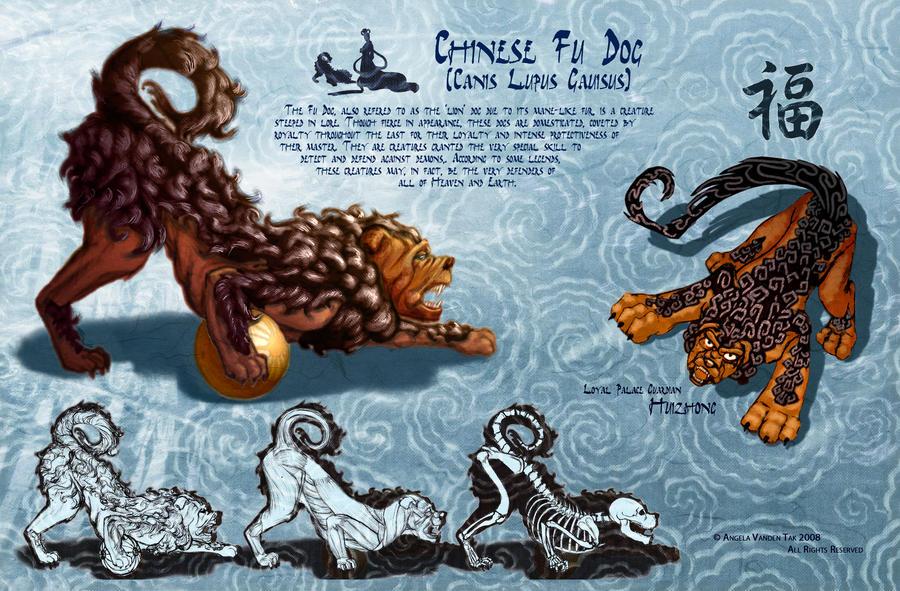 Chinese fu dog - photo#12
