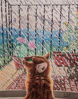 Raindrops on Whiskers II