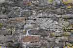 Seamless Stone Wall Texture 02..