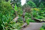 Enchanted Garden 02..
