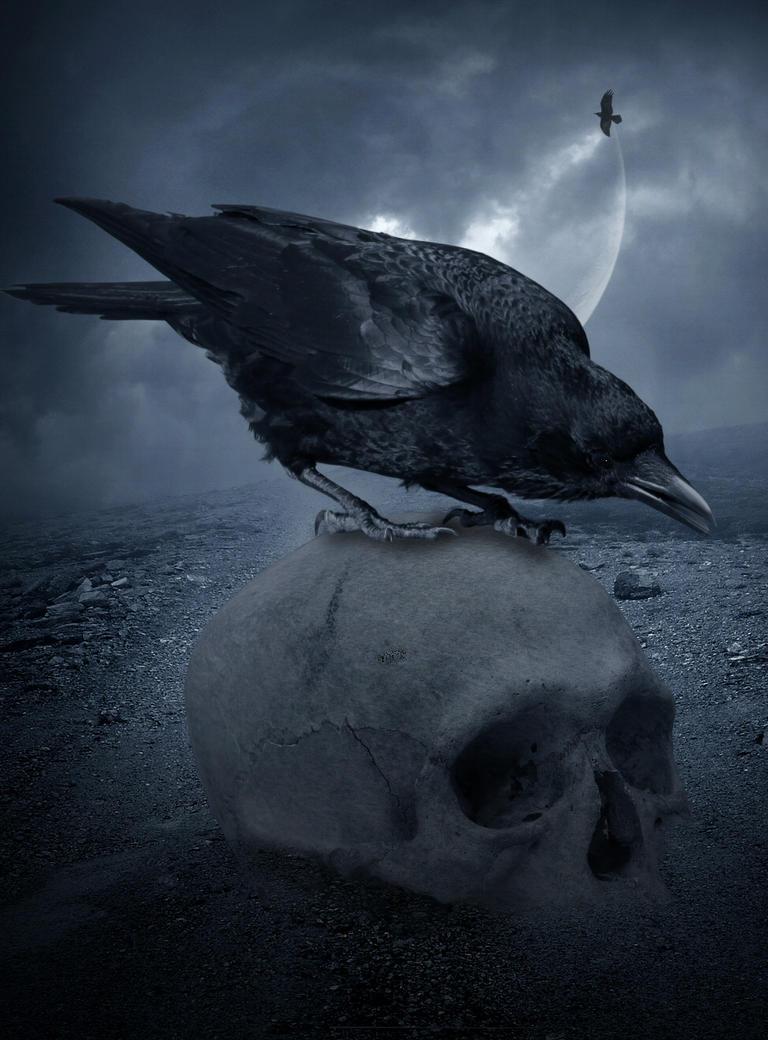 The Crow.. by AledJonesStockNArt on DeviantArt
