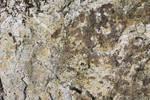 Rock Texture..