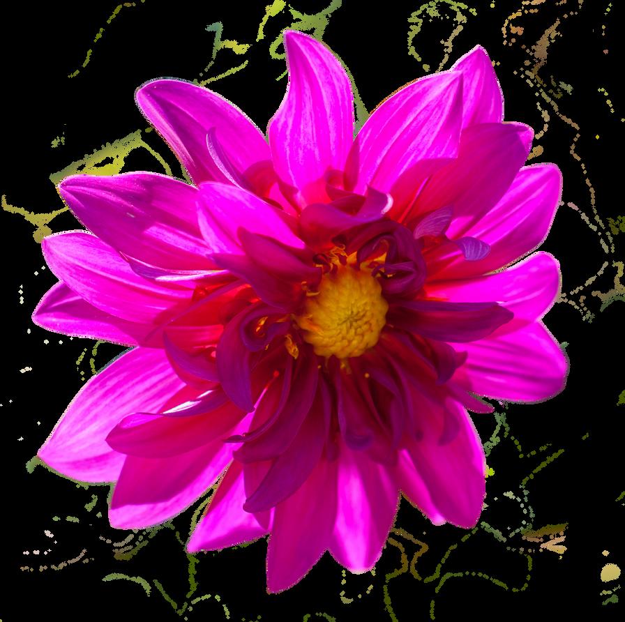 Hot pink flower cutouts objecthot pink flower mightylinksfo