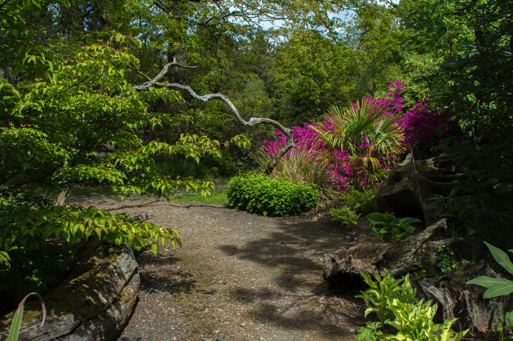 June 2015 Jungle Garden Stock.. by WelshDragonStockNArt