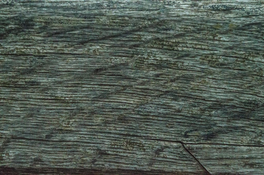 Wood Texture Stock May 2016.. by WelshDragonStockNArt