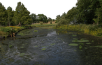 Pond Stock PNG..