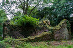 Old Cottage Ruin 01..