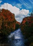 Autumn River..
