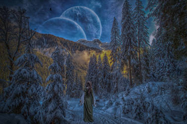 Walking In A Winter Wonderland.. by AledJonesDigitalArt