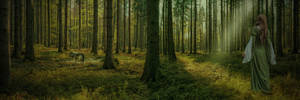 The Forest..
