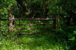 Old Wooden Gate Stock September 2017..