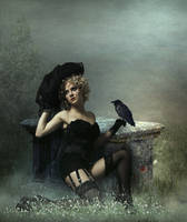 The Black Widow.. by AledJonesDigitalArt