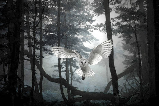 Night Hunter..