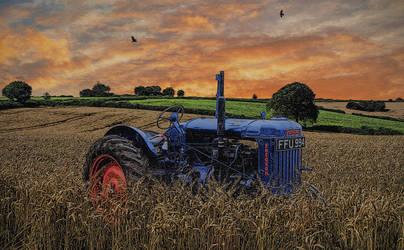 Summer meadows.. by AledJonesDigitalArt