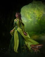 Enchanted Forest.. by AledJonesDigitalArt