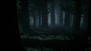 Dark forest Premade Background 01 September 2020..